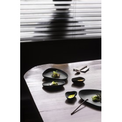 6 Assiettes porcelaine noire teintée dans la masse finition mate (19x20x3,5cm)